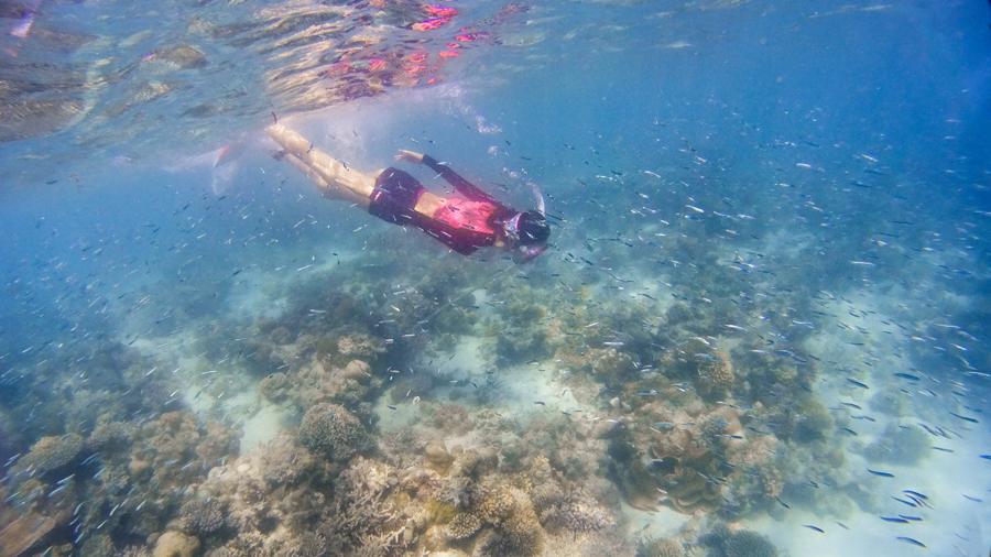 邂逅世界最美的海底.jpg