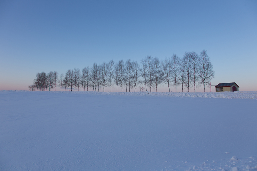 北海道赏雪.jpg