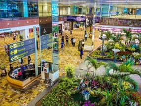 樟宜机场——免税好物扫货TOP7_自助游_新加坡自由行指南