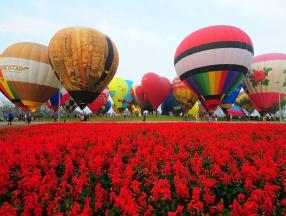 2019情人节,相约清莱国际热气球节_清迈自由行_清迈旅游