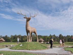 冬季限定,清迈稻草动物园开幕_清迈旅游