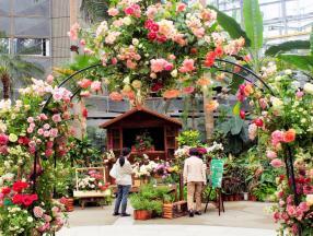 2019年大阪玫瑰祭_日本攻略_日本自由行_大阪攻略