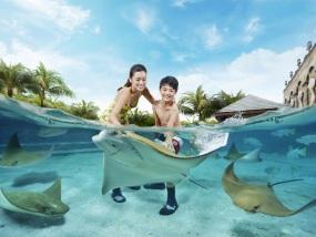 新加坡海豚园(含水上探险乐园门票)