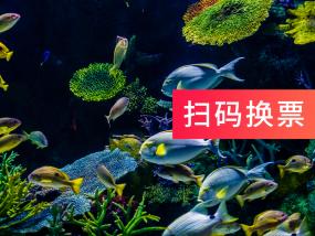 【极速出票】曼谷暹罗海洋世界