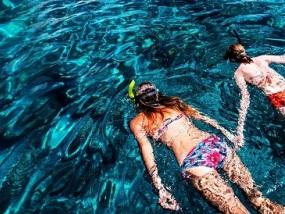 马来兰卡威芭雅岛槟城浮台浮潜一日游(兰卡威往返)