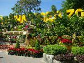 泰國熱帶水果園