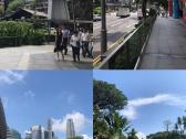 南洋游之新加坡游记